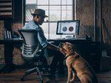 Travailler de chez soi avec un chien